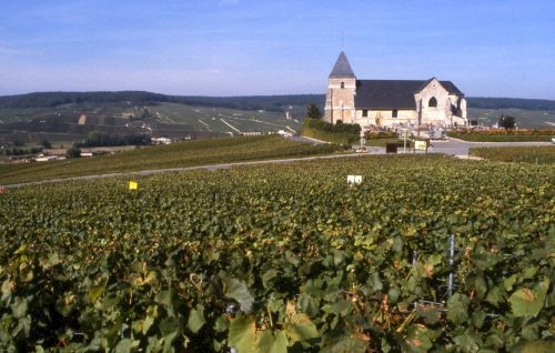 La Champagne is the region, Le Champagne the wine © CRT