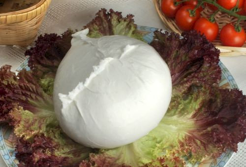 Mozzarella di Bufala (buffalo mozzarella) from Cilento