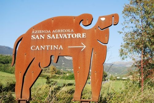 Cantina San Salvatore estate with buffalo logo © Lisa Gerard-Sharp